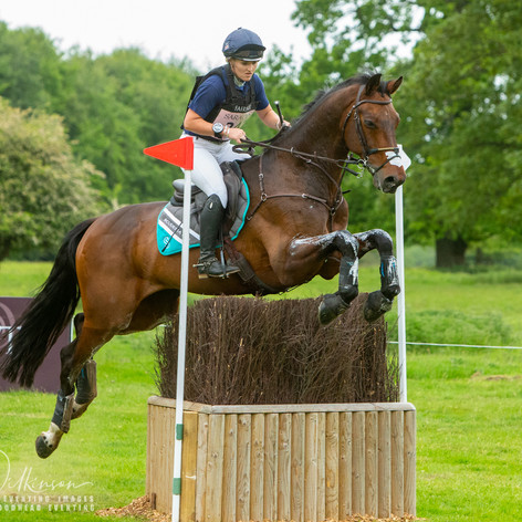 Houghton International 2019