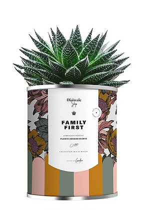 "Plante en pot "" Family First"""