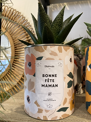 "Plante en pot "" BONNE FETE MAMAN """