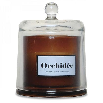 Bougie cloche ambre parfum orchidée blanch