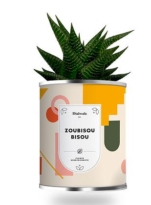 """Plante en pot """"ZOUBISOU BISOU """""""