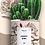 """Thumbnail: Plante en pot """"Lucky Girl """""""