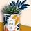 """Thumbnail: Plante en pot """"Time of my Life"""""""