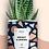 "Thumbnail: Plante en pot ""Perfect is Boring"""