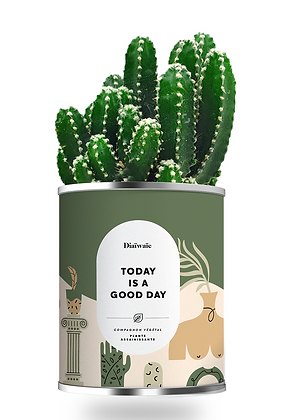 "Plante en pot ""Today is a good day """