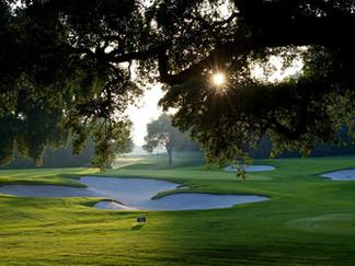 02.2 Golf 1.jpg