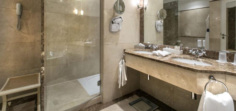 Deluxe Palacio Suite