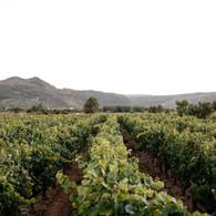 fotografía_Galicia