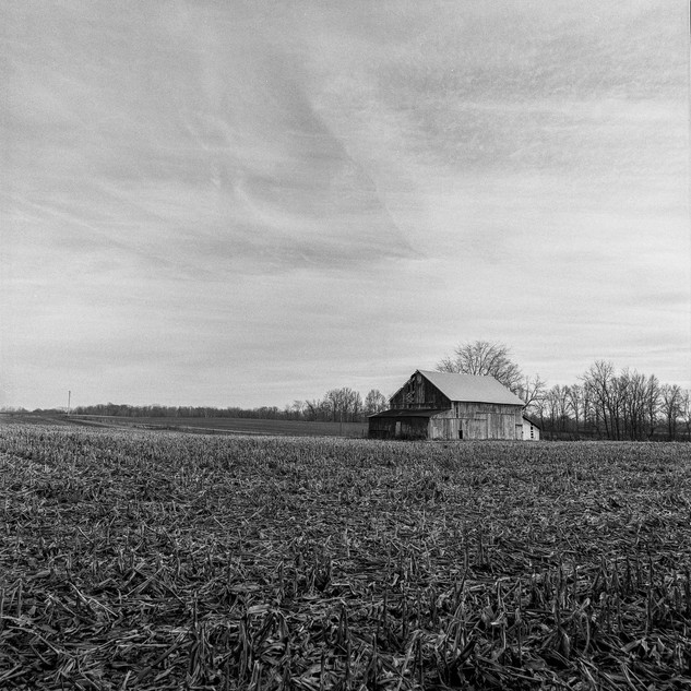 Barn In The Corn Field