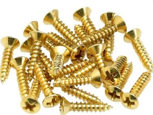 Scratchplate Screws GOLD Pack (100 )