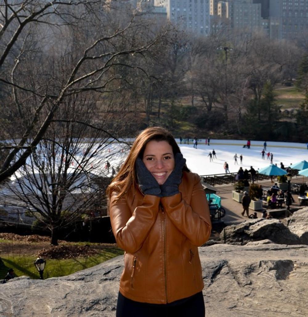 melhor época para ir a New York (2)