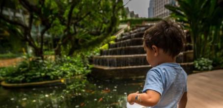 Dusit Thani – Hospedagem em Bangkok com criança