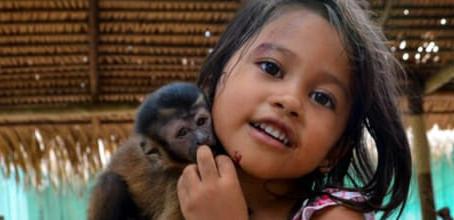 Amazônia – Brasil – O começo.