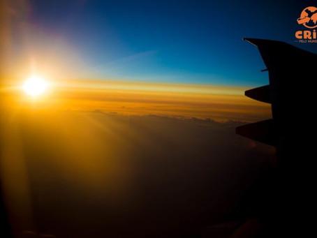Como é voar com a Turkish Airlines – Perfeita para os pequenos!