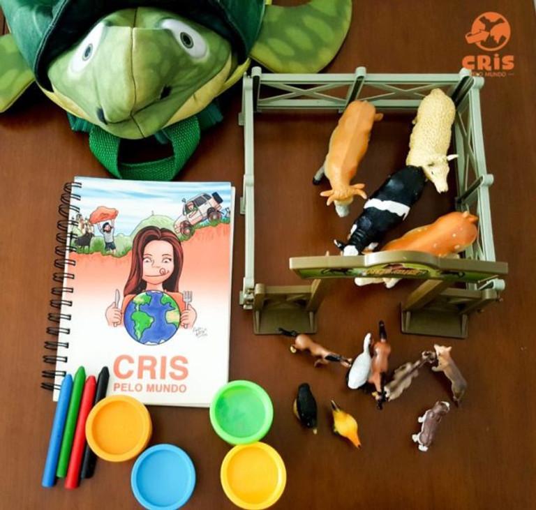 mochilinha com kit de sobrevivencia para voo longo com criança 10 dicas para voar de avião com criança voando com criança como é o voo com criança crisstilben cris pelo mundo (8)