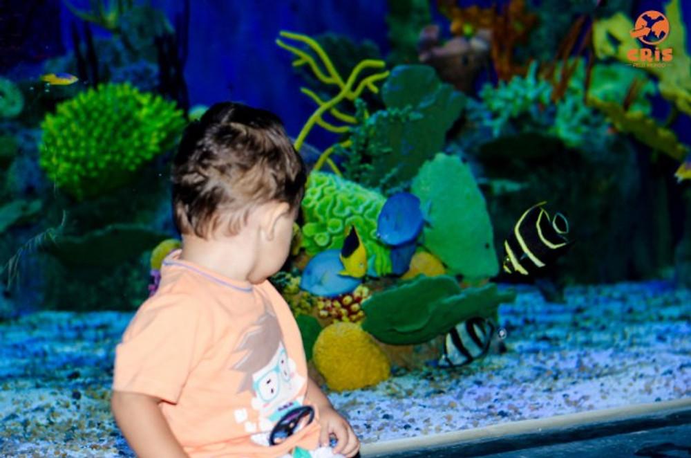 aquario-crisstilben-crispelomundo-4