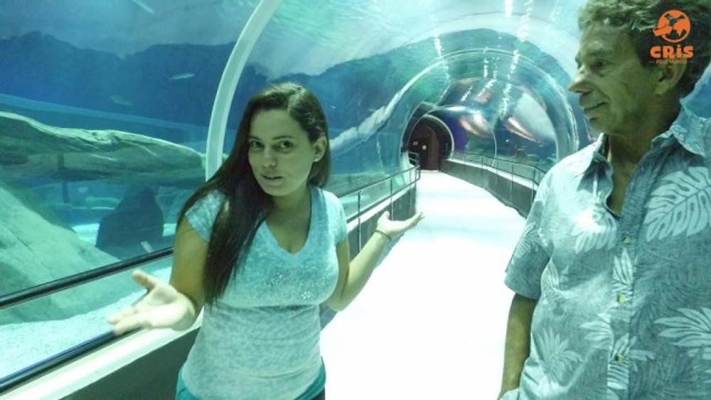 aquario-crisstilben-crispelomundo-1