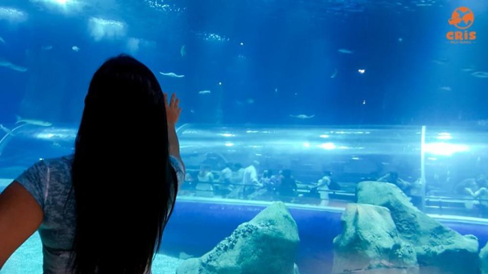 aquario-crisstilben-crispelomundo-19