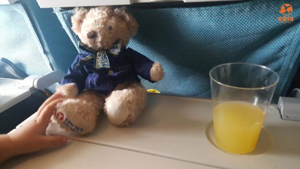 presentinhos Turkish 10 dicas para voar de avião com criança