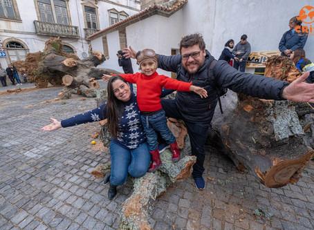 Madeiro de Penamacor – O maior madeiro de Portugal!