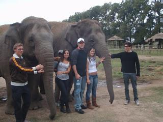 Zoo Lujan Buenos Aires Argentina Elefantes