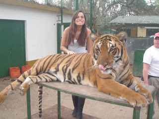 Zoo Lujan Buenos Aires Argentina Tigre