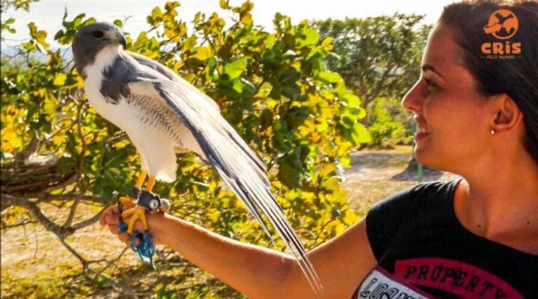 Parque dos Falcões Aracaju Crisstilben Cris pelo Mundo
