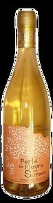 vin de fleurs de fleurs de sureau - Pétillant - Bordeaux