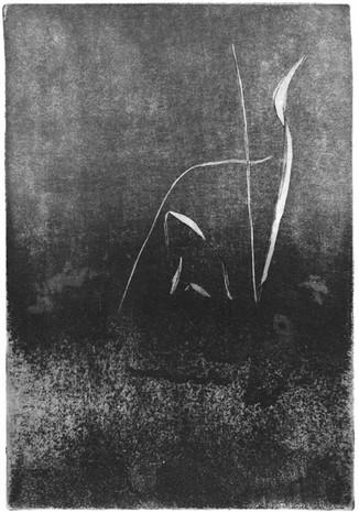 Buchillustration, 7