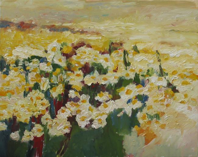 Margaritenfeld 2014, 80x100 cm