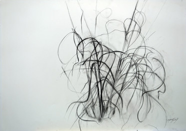 Gräser 2001, 100x70 cm