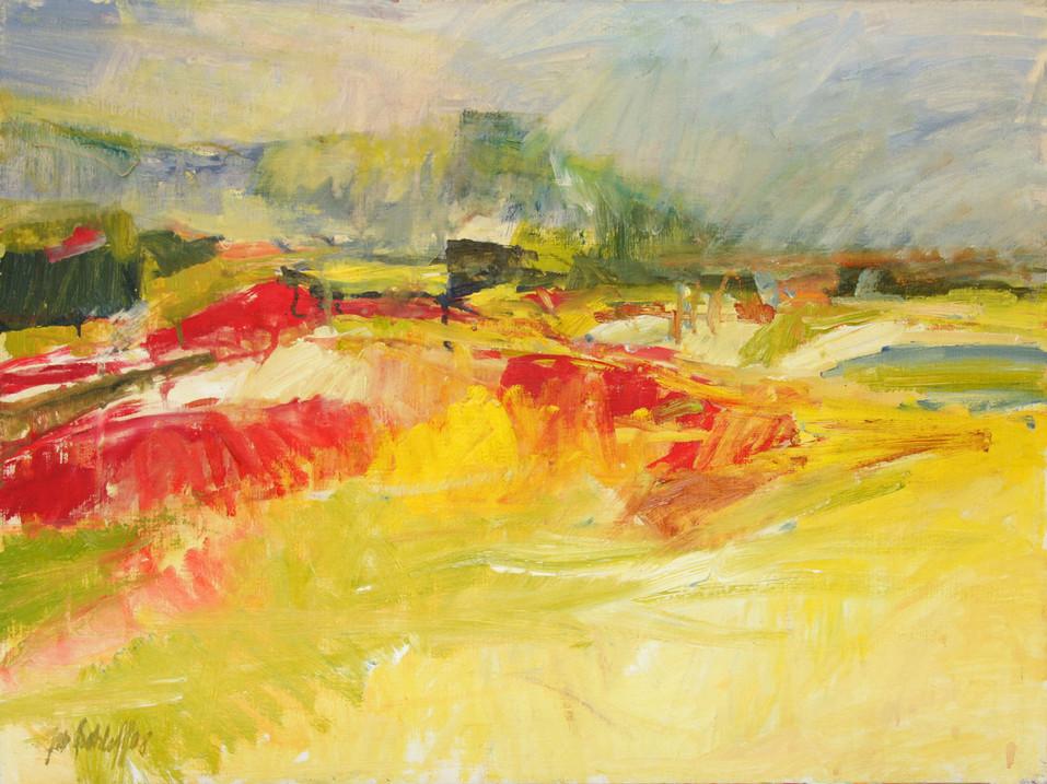 Paliano 2008, 80x60 cm