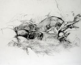 Feldaist 2012, 70x85 cm, Kreide