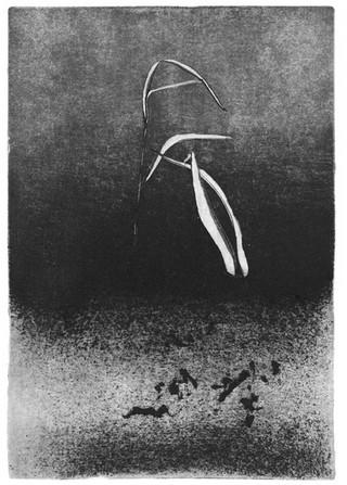 Buchillustration, 5