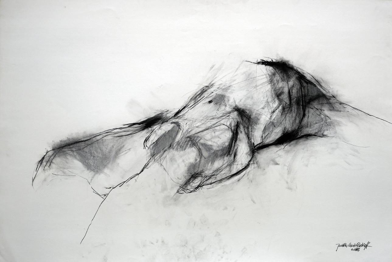 männl. Akt liegend 2005, 02, 100x70 cm, Kreide