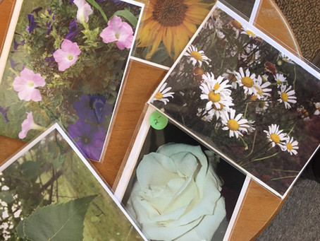 """Gem's Photography Makes Her Greeting Cards An """"Up North Gem""""!"""