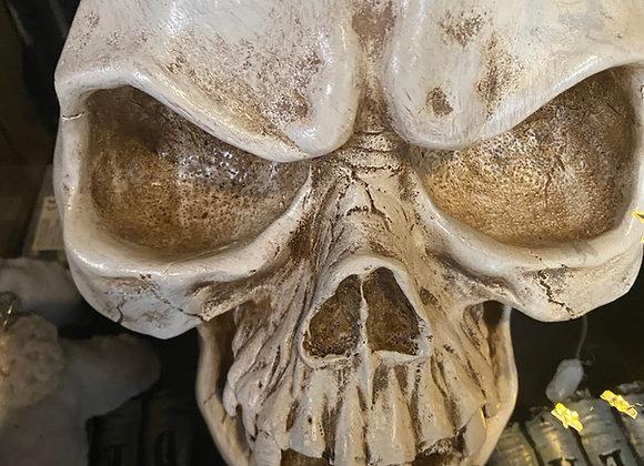 Huge skull