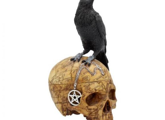 Salems Familiar - Skull