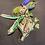 Thumbnail: Wanda Wealth (Money Doll)