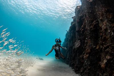 Underwater Electric Beach