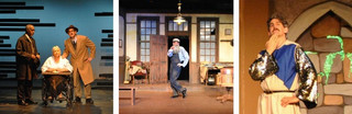 Doug Shapiro in Driving Miss Daisy, The Ghost Train, Spamalot