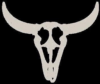 skull-bg.png