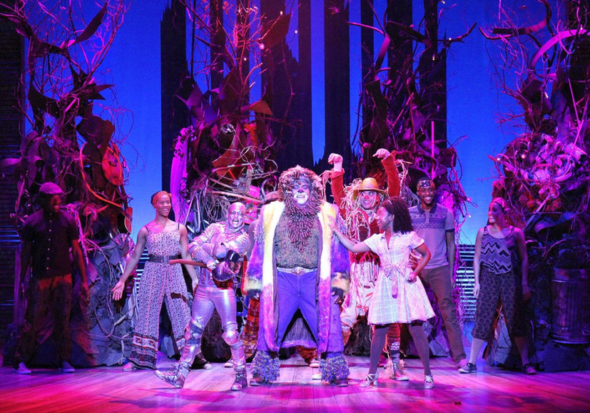 The Company of The Wiz