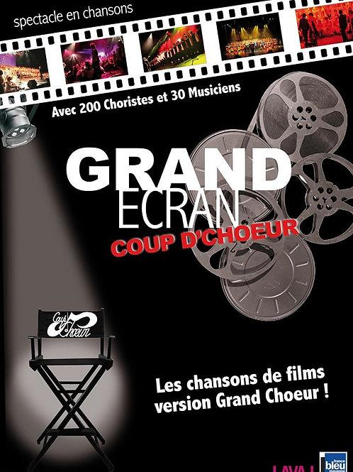 "Fichier vidéo - DVD ""Grand Ecran"""