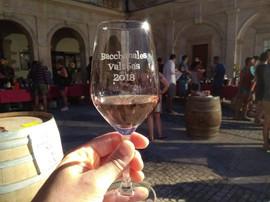 Wine fair, Valréas
