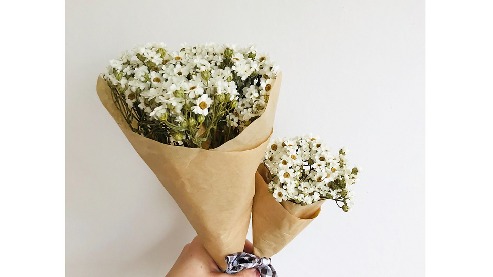 Dried Daisy Bouquet - Mini