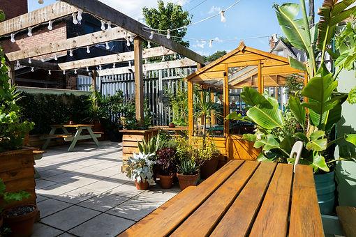 GardenPic.jpg