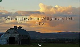 WednesdayWUI-01-10-2018.jpg