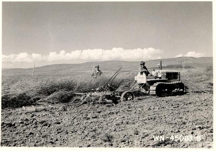 badger plowing.jpg