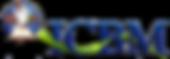 ICBM Logo.png